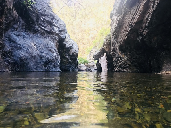 Northbrook Gorge, Dundas, Brisbane QLD